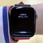 【watchOS 5新機能】Apple Watchで「Hey Siri!」不要に!