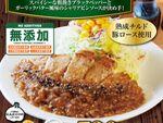 松屋「厚切りポークソテー定食」シャリアピンソース決め手