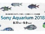 ソニー、東京で沖縄美ら海水族館の魚に会える展示