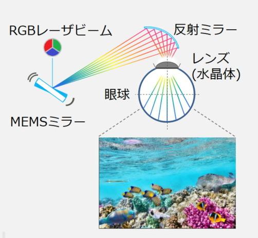 RETISSA Displayの動作イメージ図。弱めのレーザーをMEMSミラーに角度を調整しながら反射させ、さらに反射ミラーで眼球に投射する