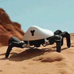 キモカワイイ! 6本脚のクモ型プログラムロボ「ヘクサ」
