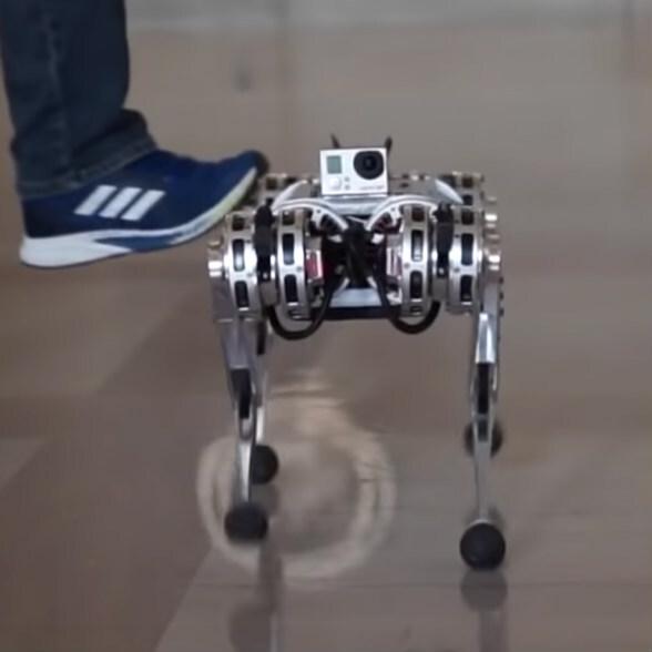 バク宙できる4本足のキモカワロボ「Mini cheetah」、MITが開発