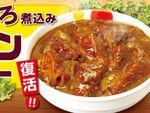 【本日発売】松屋「ごろごろ煮込みチキンカレー」