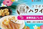 かっぱ寿司「ハワイアンフェア」