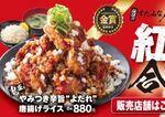 すた丼屋「鬼盛り」唐揚げ飯 2種