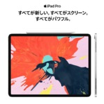 SIMフリーの「iPad」がヨドバシAkibaと梅田で販売開始
