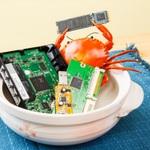 パソコンパーツに潜むRealtekの蟹 SSDからカードリーダーまで探す