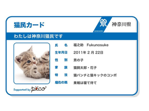 神奈川県、飼い猫へのマイクロチップ装着費用の補助を発表