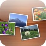 【iPhone/Androidアプリ】ウェブと連携し写真を快適に管理・共有する『ちょこフォト for Life-X』