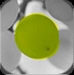 【Androidアプリ】写真の一部だけ色を残すアプリ『ColorUp』
