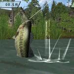 ニンテンドー3DSで釣りゲームがリリースラッシュ! ……なのはナゼ?