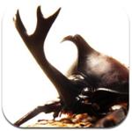 120種類の昆虫を収録したiPhoneアプリ、世界のカブト・クワガタ図鑑