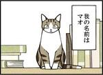 週アスCOMIC「我々は猫である」第1回