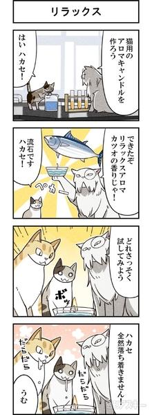 週アスCOMIC「我々は猫である」第9回