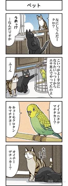 週アスCOMIC「我々は猫である」第10回