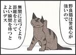 週アスCOMIC「我々は猫である」第30回