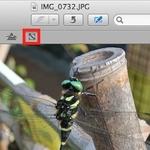Macで画像のサイズや解像度を変更したいなら「プレビュー」が便利