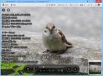 圧縮ファイル内の画像も表示可能な画像ビューアー『Honeyview』|無料ソフトの殿堂