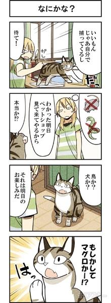 週アスCOMIC「我々は猫である」第11回