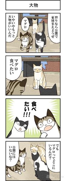 週アスCOMIC「我々は猫である」第17回