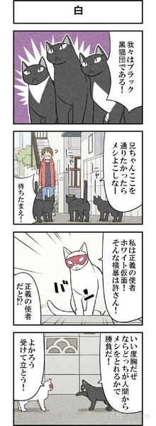 週アスCOMIC「我々は猫である」第21回