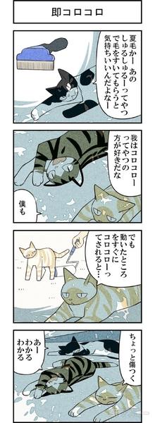 週アスCOMIC「我々は猫である」第29回