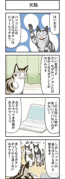 週アスCOMIC「我々は猫である」第33回