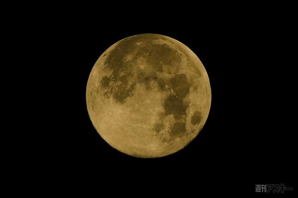 皆既月食は明日4/4夜9時見ごろ 花見と天文ショーを同時に楽しめる ...