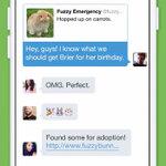 Twitterが2つの新機能を発表 グループメッセージと動画の撮影・投稿に対応