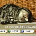 ネコ好き必見!黒ウィズのニヤニヤするほどかわいい新テレビCMは3/5から放送開始