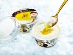 チーズタルト専門店PABLOのアイスがさらに本格的になった!とろけるおいしさ!!