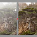 新Photoshopは霧をコントロールする!Adobe CC 2015大型アップデート新機能まとめ