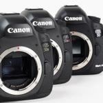 EOS 5Dsと5Ds Rと5D Mark IIIを撮り比べ 5060万画素ってどれぐらいキレイなの?