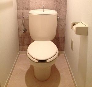 トイレは不平等だ:ナベコの取材日記