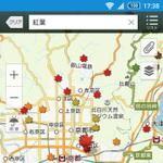 Yahoo!地図アプリで「紅葉情報」を公開、見ごろや混雑状況がわかる