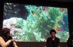 ここまできたか!パプアニューギニアでの水中撮影やスローモーション撮影でiPhoneが大活躍