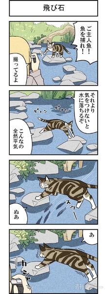 週アスCOMIC「我々は猫である」第54回