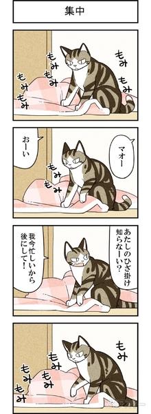 週アスCOMIC「我々は猫である」スペシャル版その2