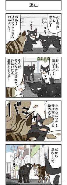 週アスCOMIC「我々は猫である」第60回