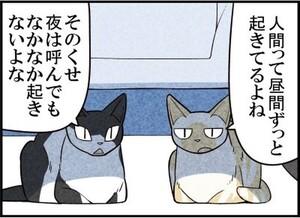 週アスCOMIC「我々は猫である」第64回