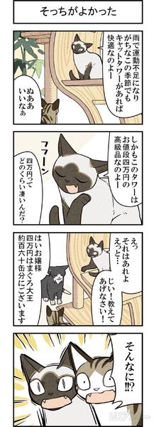週アスCOMIC「我々は猫である」第66回