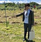 日本ワインのぶどう、植樹してきました!