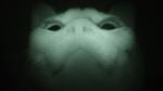 ノスタルジー! 自宅に篭もって2001年のカメラで撮影した猫写真を発掘