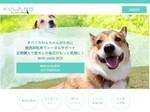 愛犬の健康をサポートする厳選グッズの定期便「WAN Smile BOX」