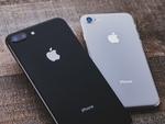 iPhone SE Plus、2021年後半発売か