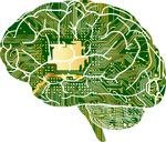 精度が重要な「学習」と速度が求められる「推論」 AIプロセッサーの昨今