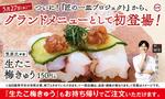 スシロー、約80万食を売り上げた「生たこ梅きゅう」を夏の定番商品へ