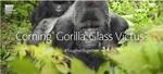 コーニング、ゴリラガラス6からキズに対し約2倍頑丈になった「Gorilla Glass Victus」を発表