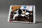 iPadはとことん使い倒せる! 3つのオススメ活用提案