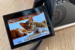 最高で最強の猫撮りカメラ、キヤノン「EOS R5」誕生!